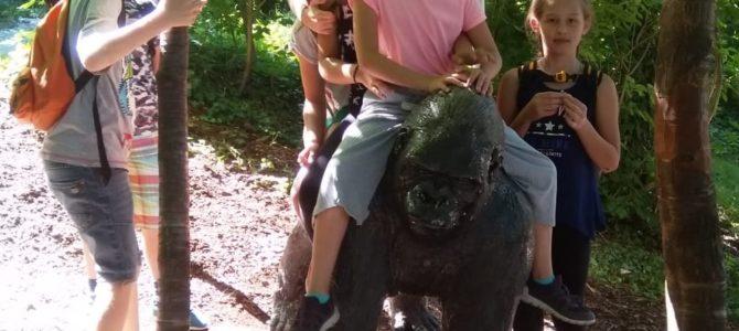 Ausflug in den Zoo Schmiding